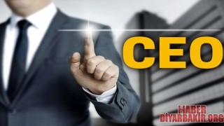 CEO Nedir..?